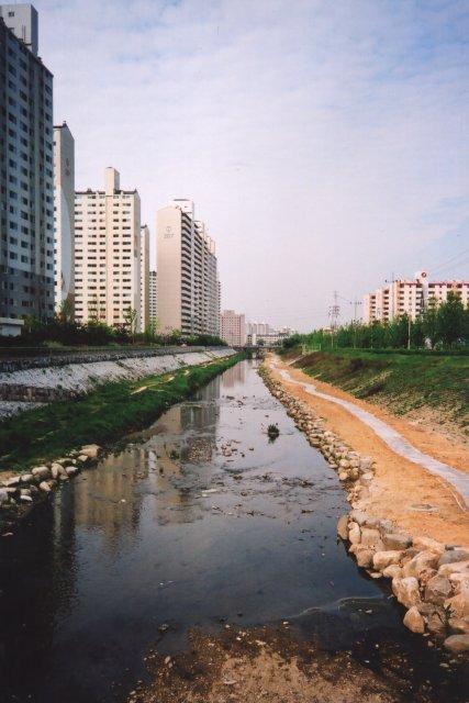 Речка в городе Сувон