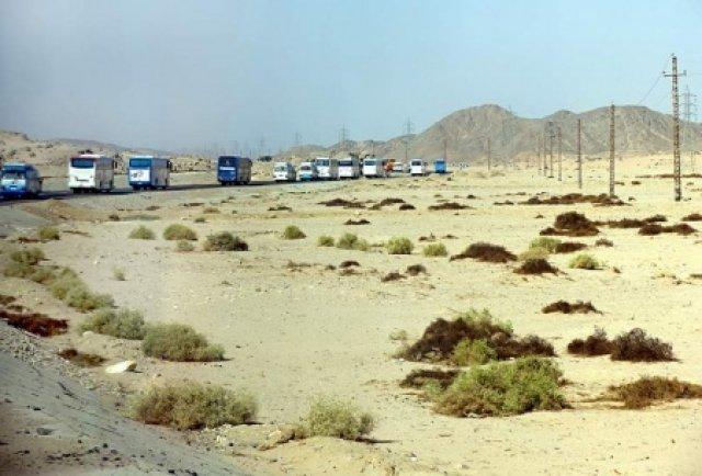 Караван из Сафаги в Луксор, Египет