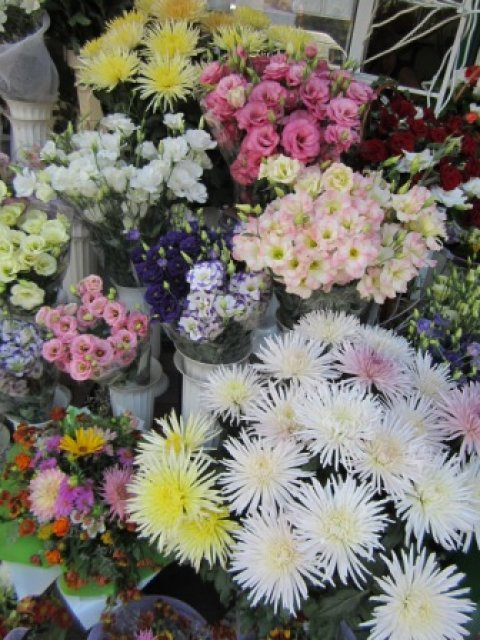 на улице продают такие чудесные цветы