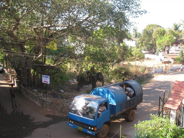 Вид из номера отеля в Гоа, Индия