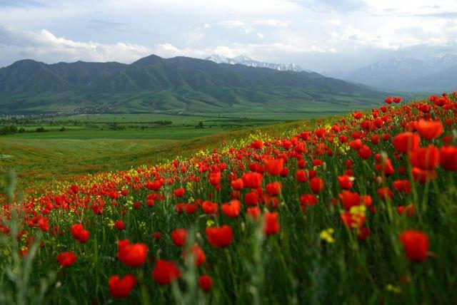 месяц май в Киргизии