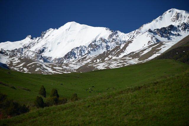 зеленые луга в обрамлении снежных вершин