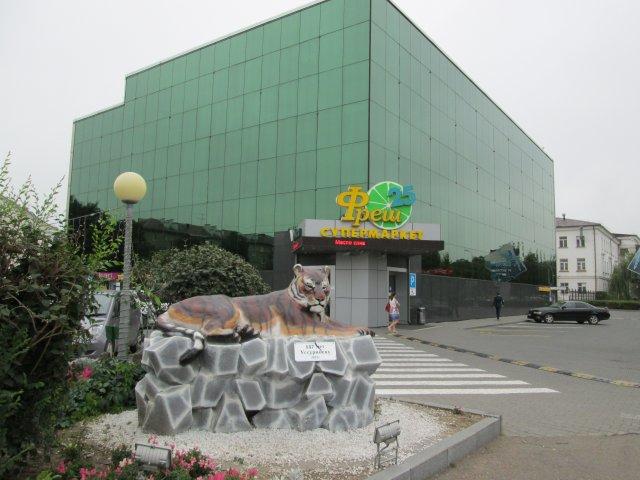 На переднем плане памятник уссурийскому тигру