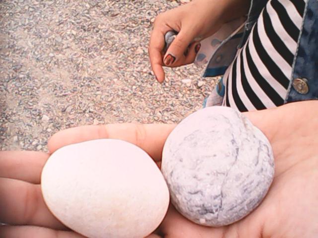 Камни похожие на яйца