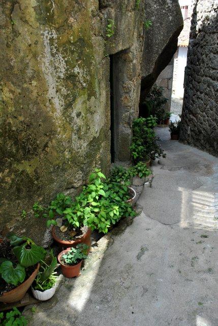 Один из двориков Монсанту.