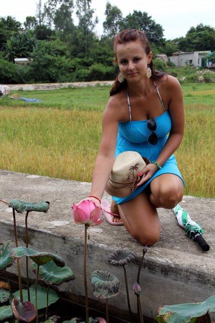 лотосы на островах Вьетнама