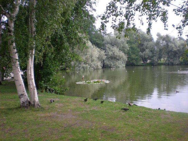В парке Сорсапуйсто