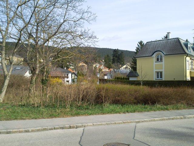 Фрагмент жилых построек