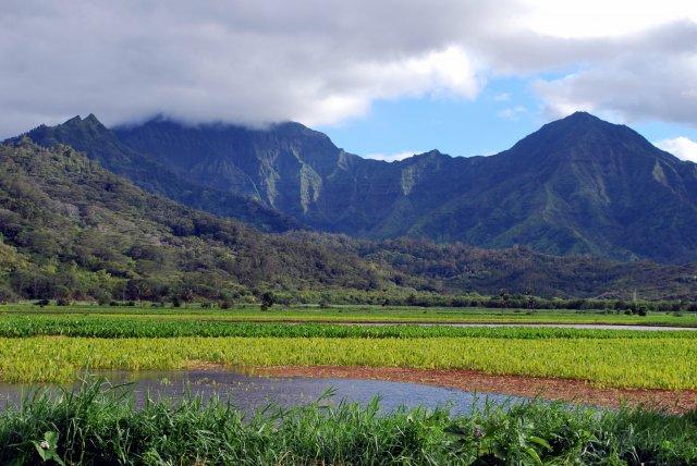 Остров Кауаи, Гавайи