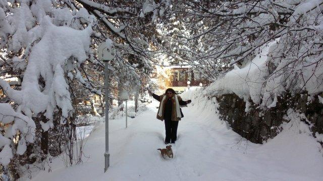 февраль 2012 Клептуза, Велинград