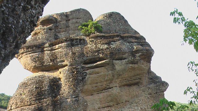 Скала-орангутанг
