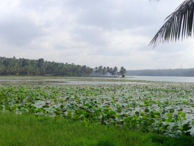 Озеро Веллаяни