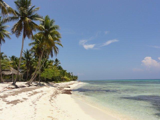 Остров Соана, Доминикакана