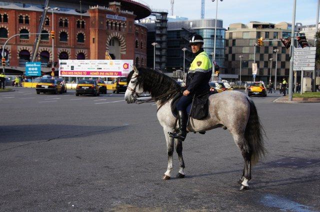 Конный полицейский, Барселона