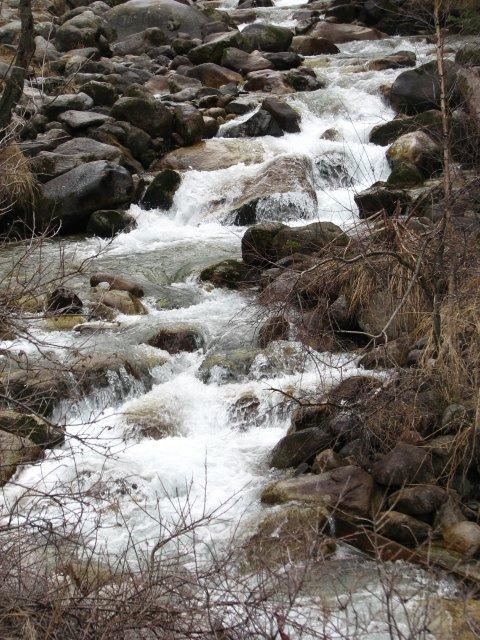 Горная речка неподалеку от Алматы
