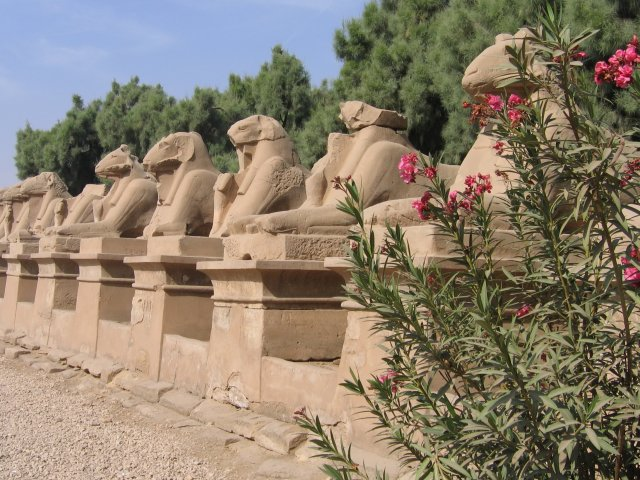 Аллея сфинксов у Карнакского храма, Египет