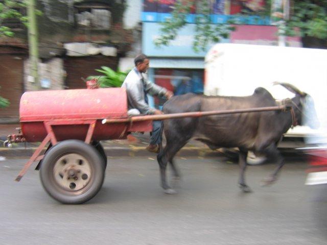 Доставка воды, Мумбаи