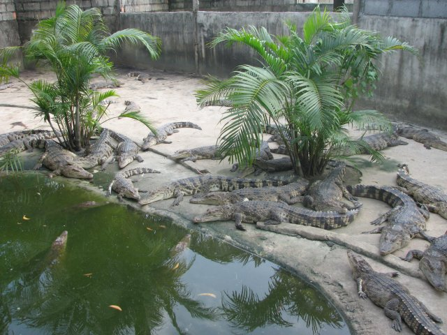 Зоопарк, Пхукет