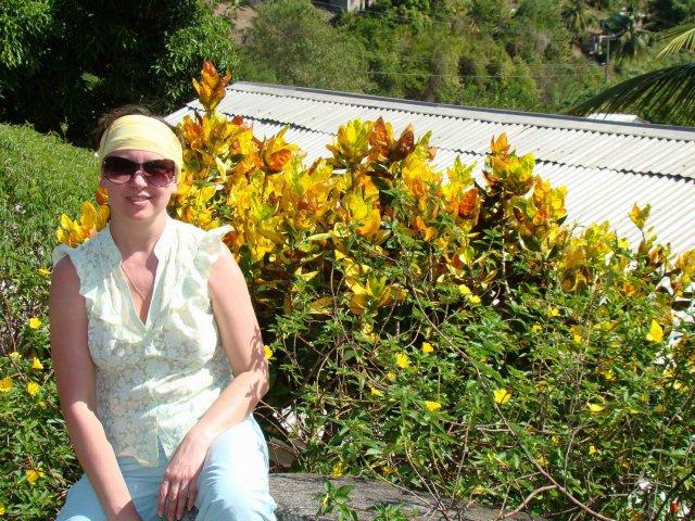 Счастливый кротон, остров Сент-Люсия