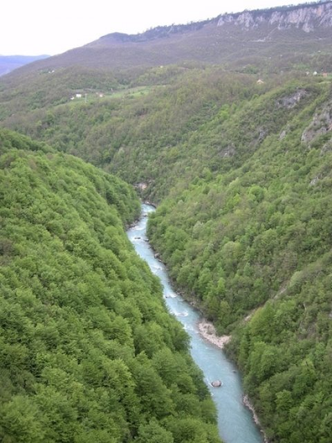 Каньон и река Тара, Черногория