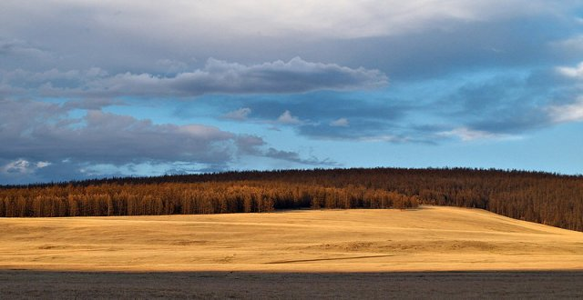 Автопутешествие Хабаровск - Монголия