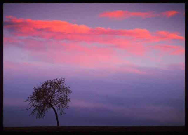 Закат в Монголии