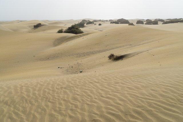 песчаные дюны Маспаломас
