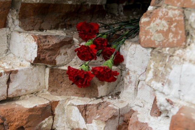 Цветы около мельницы Гергардта