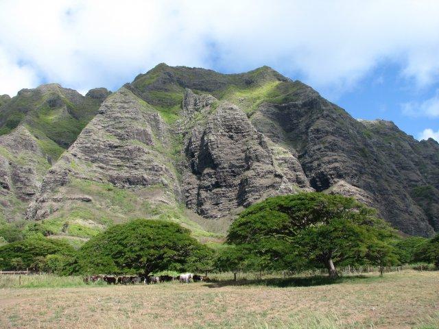 Ранчо Куалоа, Гавайи