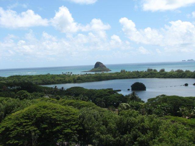 Экскурсия в джунгли, Оаху, Гавайи