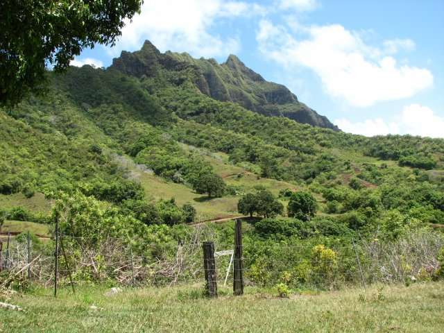 Долина Ka'a'awa, экскурсия в джунгли, Оаху, Гавайи
