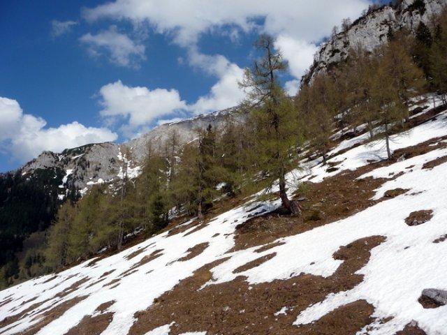 Склоны горы Jenner