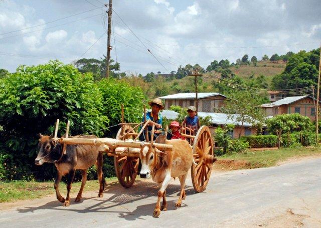Калав, транспортная система бирманской глубинки