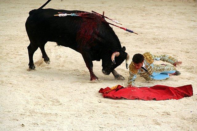 Коррида в Севилье, Испания