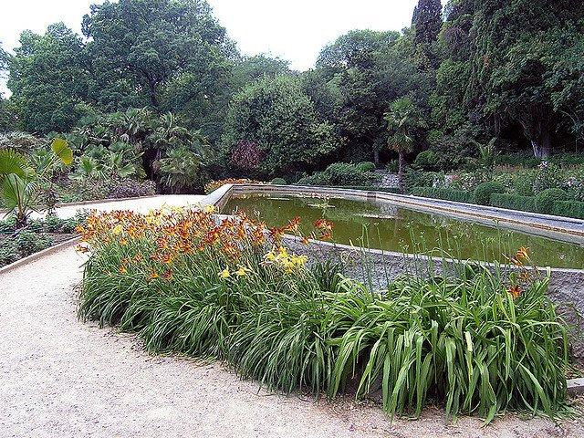Никитский Ботанический Сад, Крым, Украина