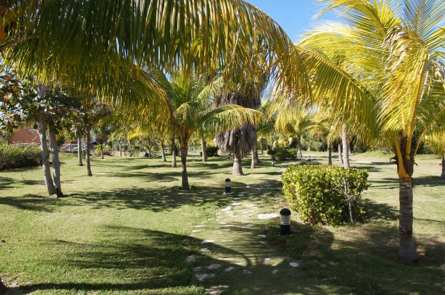 Пальмовая роща, Sandals Royal Hicacos 5*, Варадеро