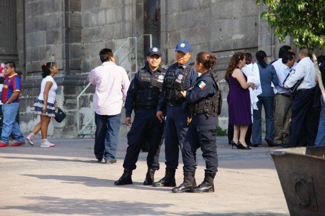 Федеральная полиция Мексики