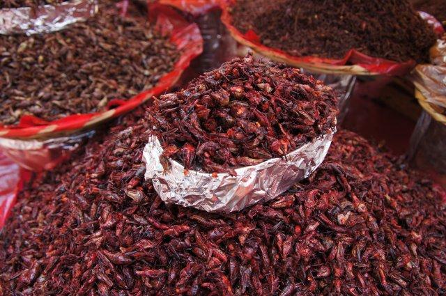 Кузнечики - мексиканский деликатес, Оахака