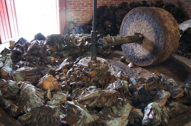 Процесс приготовления мескаля на фабрике, Оахака, Мексика