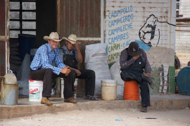 Община меннонитов, Мексика