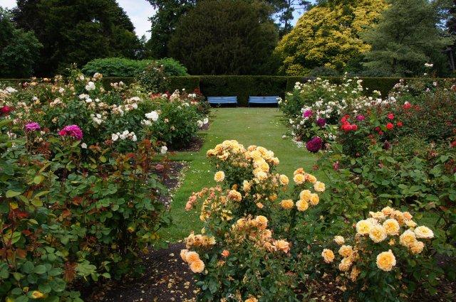 Ботанический сад Крайстчерча, Новая Зеландия