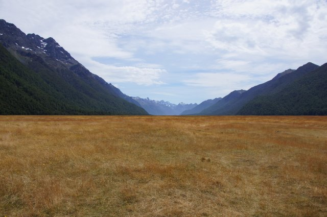 Золотые поля долины Эглинтон, Новая Зеландия