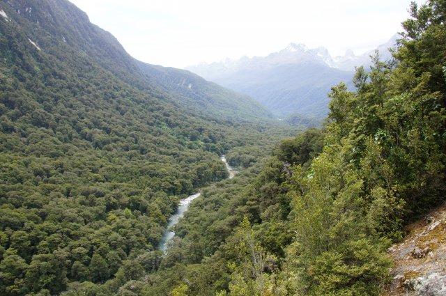 Pop-s view, Новая Зеландия