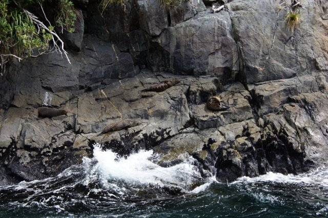 Милфорд Саунд, Новая Зеландия