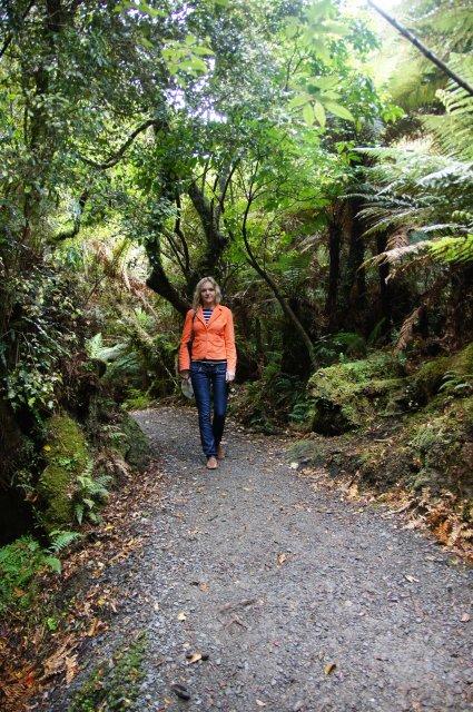 Лесная тропинка к McClean Falls, Новая Зеландия