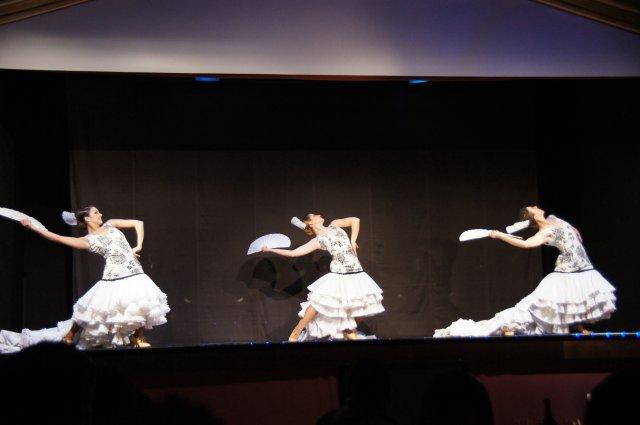 Шоу Фламенко в Барселоне, Испания