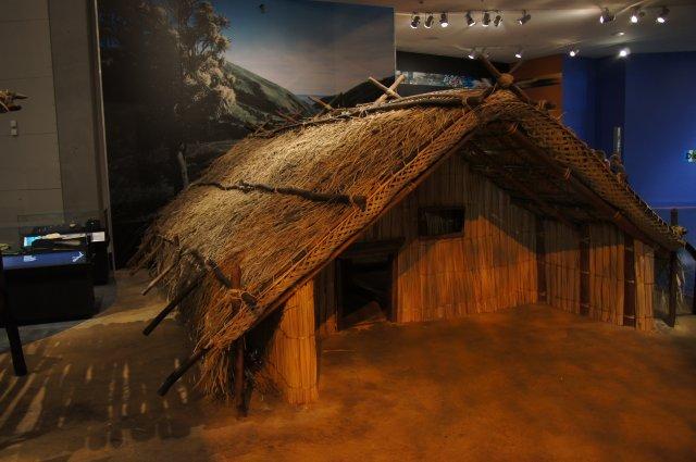 Дом жителей племени маори, музей Te Papa, Новая Зеландия