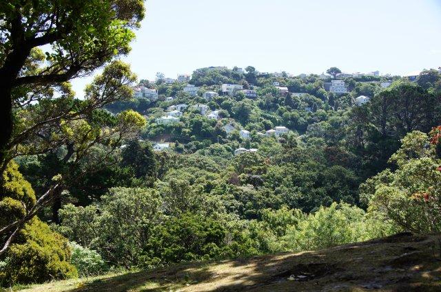 Ботанический Сад, Веллингтон, Новая Зеландия
