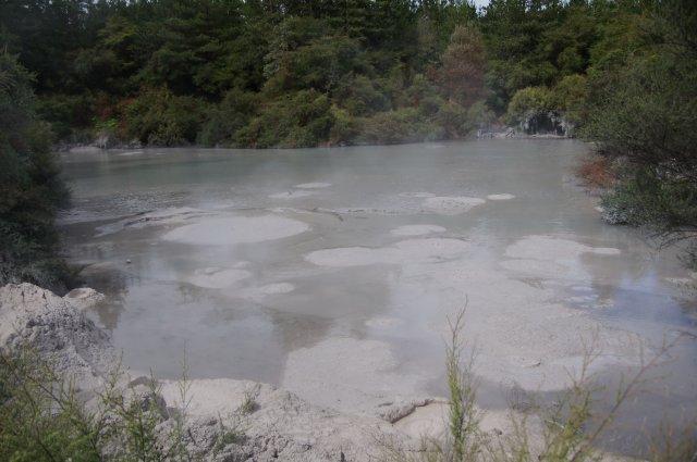 Бурлящий грязевой бассейн, Роторуа, Новая Зеландия