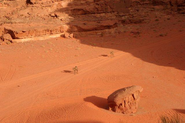 Пустыня Вади Рум, Иордания
